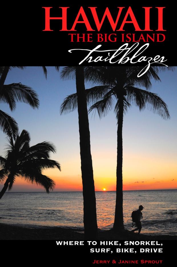 hawaiibigisland