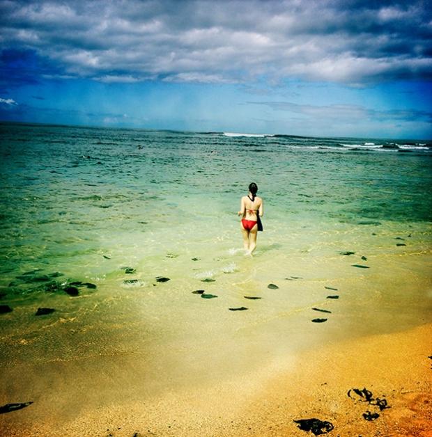 hawaiibeaches
