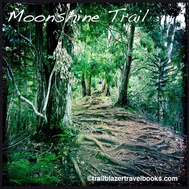 MoonshineTrail