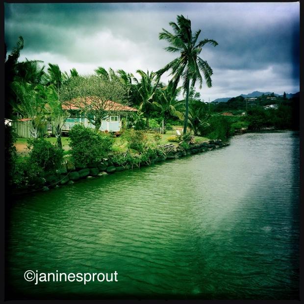 Hawaii Trailblazer Travel Photo