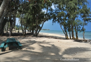 b5c2d-oahu_beach_trailblazer