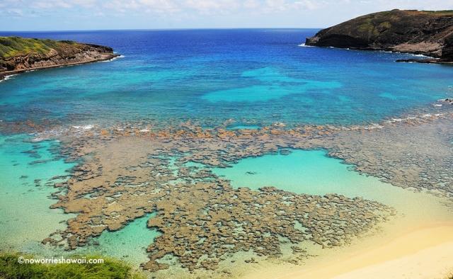 Hanaumau Bay Snorkeling Oahu Hawaii Outside