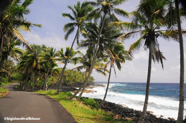 puna_hawaii_big island trailblazer