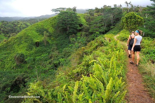 hiking Kukui Trail Kauai Trailblazer HawaiiOutside