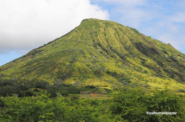 Waikiki Oahu Trailblazer Hanauma Bay