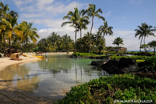 kauai hyatt hotel