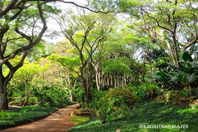 allergen gardens Poipu kauai