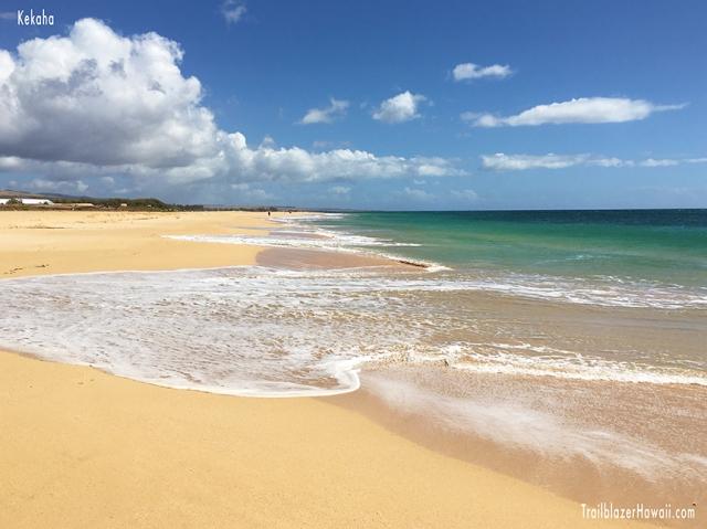Kekaha Beach Kauai Trailblazer